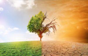 Klimawandel - Zukunft unserer Erde